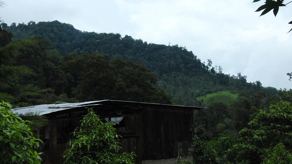 Macizo de Kilambe