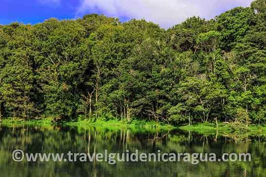 Selva Negra Nicaragua